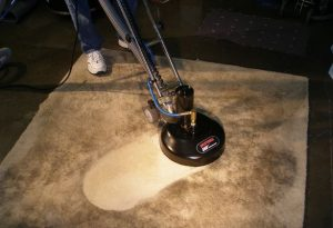 service carpet dry cleaning