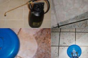 service floor maintenance
